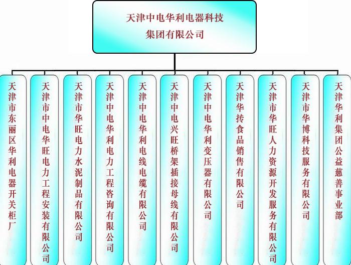 组织架构-天津中电华利电器科技集团有限公司